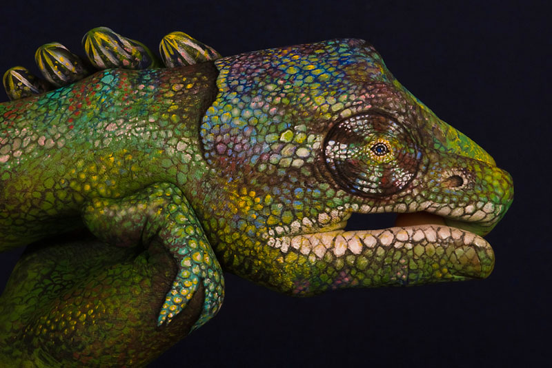 handimals-animals-painted-on-hands-guido-daniele-3