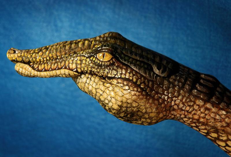 handimals-animals-painted-on-hands-guido-daniele-6