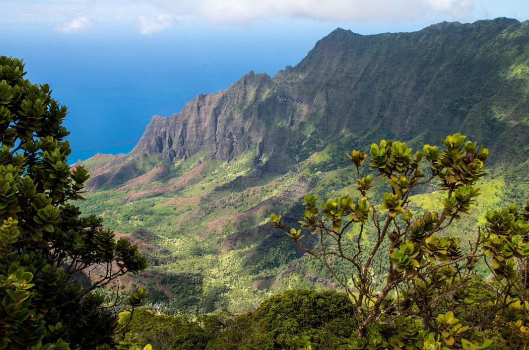Another-Sunday,-Another-Kauai-Photo