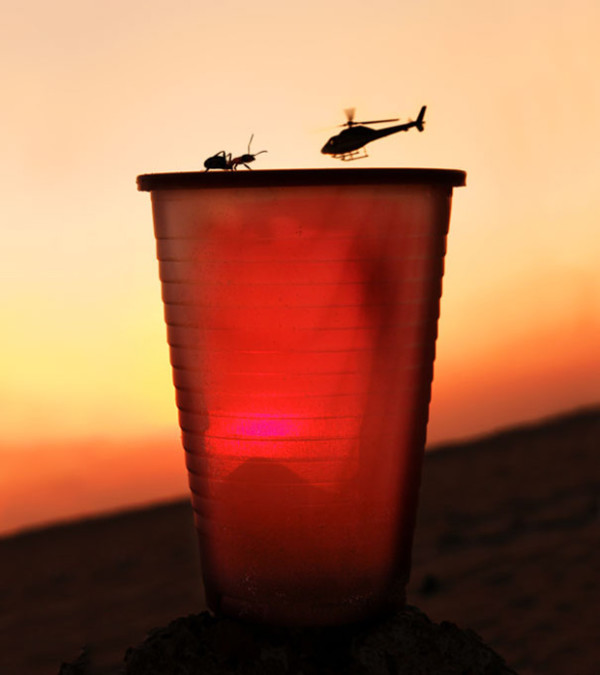 18. This ant awaiting the landing of an ant-sized helicopter...