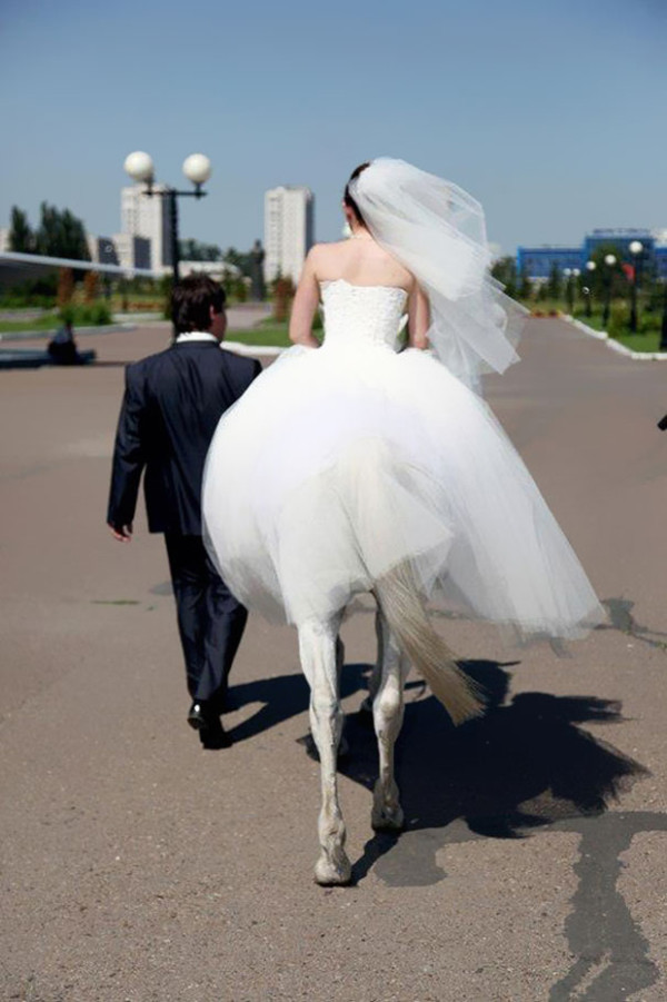 15.This beautiful horse bride.