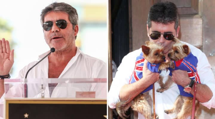 Simon Cowell donates $25,000 to help shut down dog meat farms in South Korea